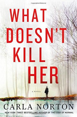 What Doesn't Kill Her: A Novel (Reeve LeClaire Series)